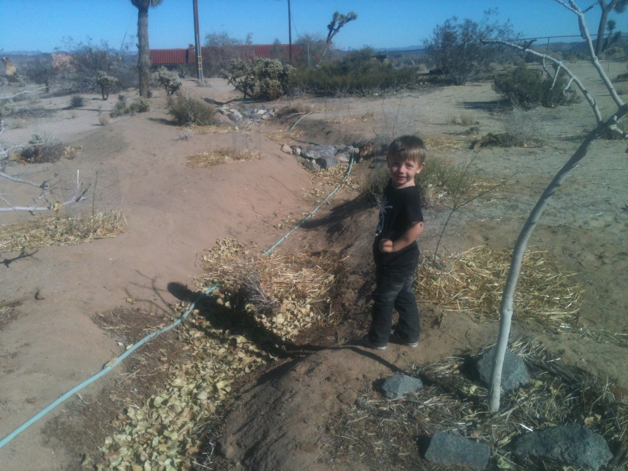 My helper showing off our work. The pistachio swale extends all the way to the road.